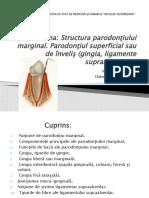 Structura parodonţiului marginal.