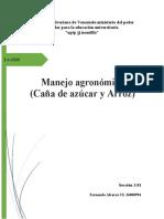CULTIVO DE CAÑA DE AZUCAR Y ARROZ (Autoguardado)