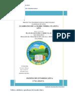 EJE ORGANIZACION SOCIAL E IDENTIDAD CULTURAL 2020