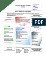 Dg-CG-001 Caracterización control y evaluación gerencial