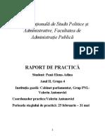 Raport Practica Elena