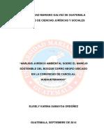 forestal tesis.pdf
