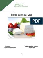 Branza telemea de vaca.pdf