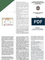 Triptico Tipologia de los sistemas de Informacion