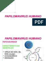 18. PAPILLOMAVIRUS