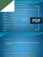 Niveles de organización-2.pdf