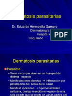 Dermatosis parasitarias