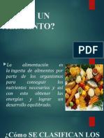 CLASIFICACION DE LOS ALIMENTOS PPT