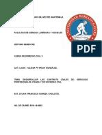 CONTRATO DE SERVICIOS PROFESIONALES, DE FIANZA Y DE SOCIEDAD