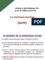 3.Mb. Plasmique (suite).pdf