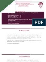 Mi presentación sobre el INCO y PROFECO_Javier David Vasquez Juarez