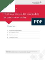 Lectura Fundamental 8 - Principios, Contenidos y Nulidad Contratos Estado.pdf