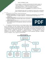 ANATO PRIMERA CLASE III fase.docx