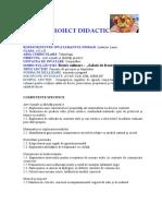 proiect_laura