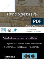 Pathologie biliaire
