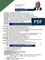 CV bruno en francais