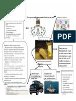 """Evidencia 3 Infografía """"Estrategia global de distribución"""".docx.docx"""