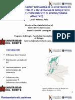 Vegetacion_El Morro_20190318.pdf