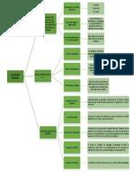 mapa conceptual auditoria interna