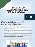 EXPLICACION DEL HECHO SEXUAL  HUMANO