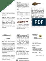 Triptico_peces.docx