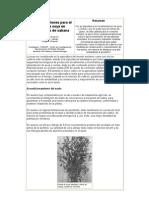 20051117103345_Recomendaciones Para El Cultivo de Soya