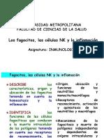 C6 Fagocitos NK Inflamación.pptx