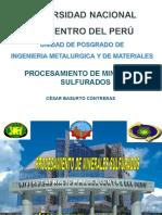 PROCESAMIENTO DE MINERALES SULFURADOS