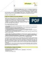 Marek.pdf
