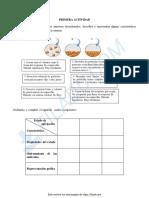 PRIMERA ACTIVIDAD QUIMICA.pdf