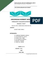 PROYECTO NECTAR SANKY - AVANCE (3).docx