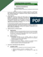 N° 03-TDR MANUEL - SIN FIRMA