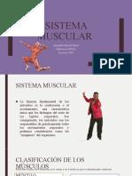 CLASE DE SISTEMA MUSCULAR.pptx