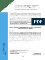 DPG 10 Revision rabia