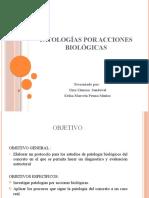PATOLOGÍAS POR ACCIONES BIOLÓGICAS