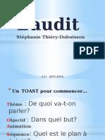 L'audit Stéphanie Thiéry-Dubuisson