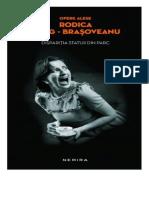 Rodica Ojog Brasoveanu - Disparitia Statuii Din Parc