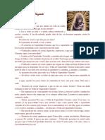 O Capuchinho Cinzento.pdf