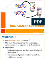 DNA Damage and Repair_addtnlnotes.pdf