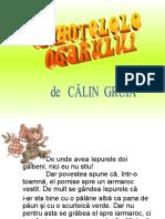 153585960-ciubotelele-Ogarului
