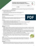 03-10-2020-GUIA-2-ATOMO (2).docx