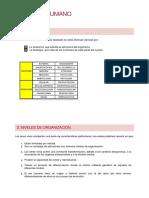 el-cuerpo-humano.pdf