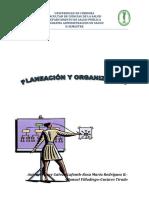MODULO_PLAN_Y_ORGANIZAC_II_SEM_ADMON EN SALUD_2020