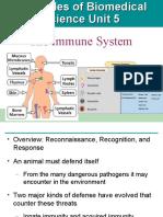 Immune System WW