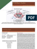 Pure  Report Newsletter December 2010