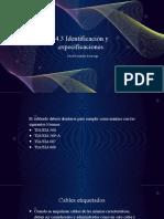 4.3 Identificación y especificaciones.pptx
