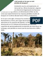 Mayor pérdida de bosques