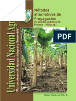 Métodos alternativos de Propagación de semilla agámica de Plátano (Musa sp.)
