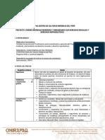 Convocatoria Responsable de Proyecto CHIRAPAQ PPG 2020