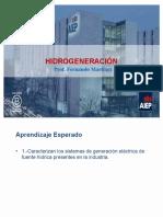 Tema I - Hidrogeneración